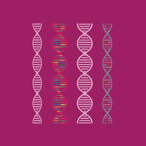 dna_strands